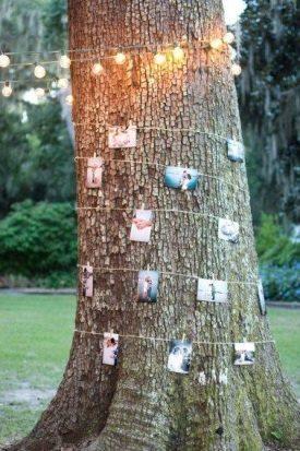 Memories Tree